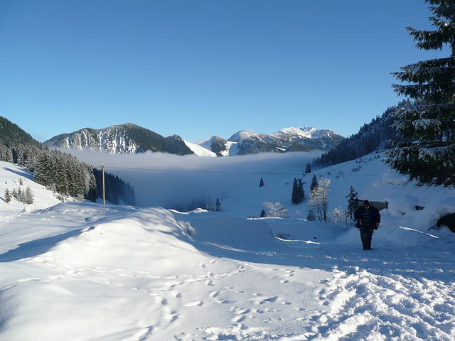 Wanderung vom Spitzingsee 1020m bis zur Unteren Firstalm 1320m