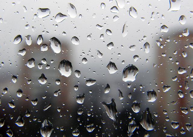 Rainy Tuesday raindrops