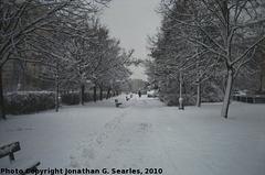 Snow in Haje, Picture 3, Prague, CZ, 2010