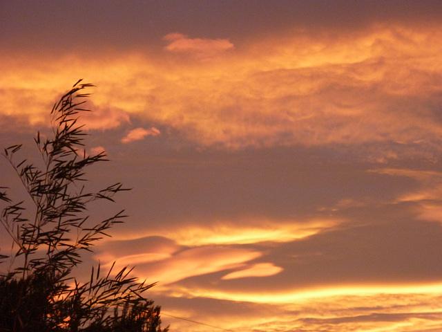 ciel à Limoux