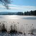 Winteridylle - Illmensee