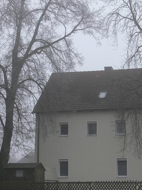 Nebeltag in der Oberpfalz 2
