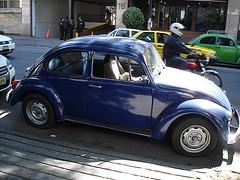 Bleu coccinelle