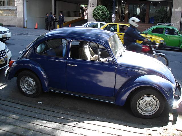 Mexico city / 12 janvier 2011.