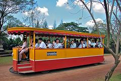 Streetcar running around the area