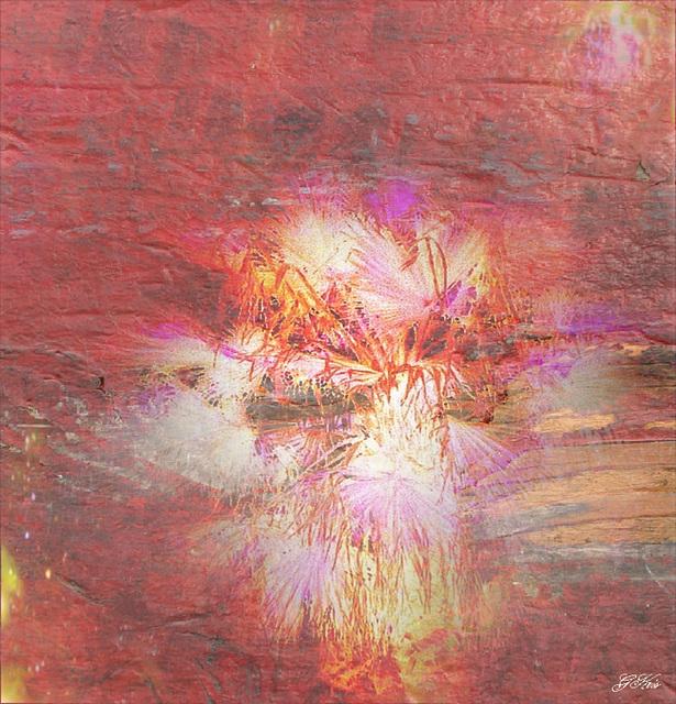 Palm fireworks......A jouir éblouis, et vivre l'utopie