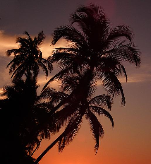 Ombres maldiviennes