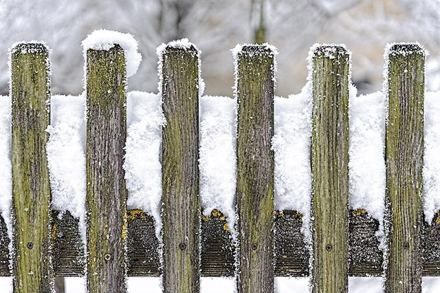 Walking in Winter Wonderland 6 - Ing. Robert Schöller