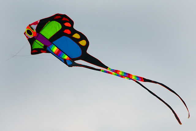 A kite flying over the Namsan Park in Xining