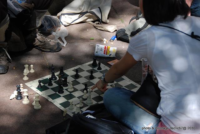 la joueuse d' échecs