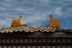 Monastère Tibétain - Hong Huan
