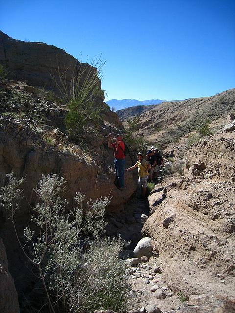 Ladder Canyon Trail (6278)