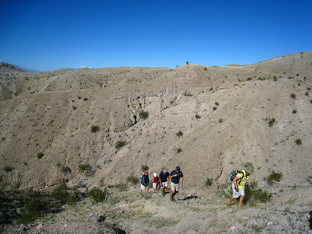 Ladder Canyon Trail (6279)