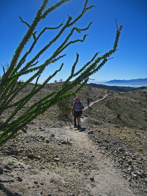 Ladder Canyon Trail (6284)