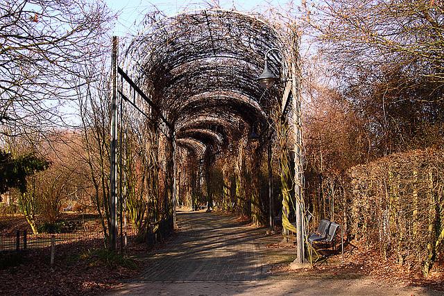 20110130 9545RAw [D~MH} MüGa-Park Mülheim a. d. R.