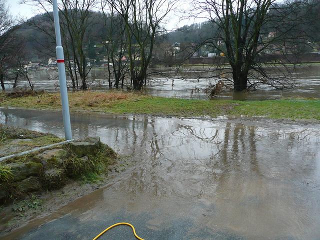 Elbehochwasser vom 15.1.-19.1.2011