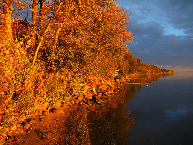 Autumn Ignition