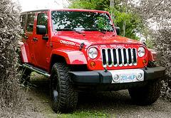 2012 Jeep Sahara