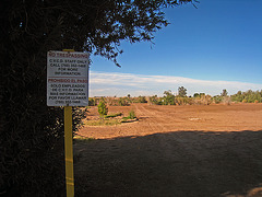 John Doe Graveyard (6142)