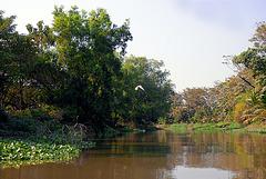 Khlong Si the side canal of Khlong Saen Saeb