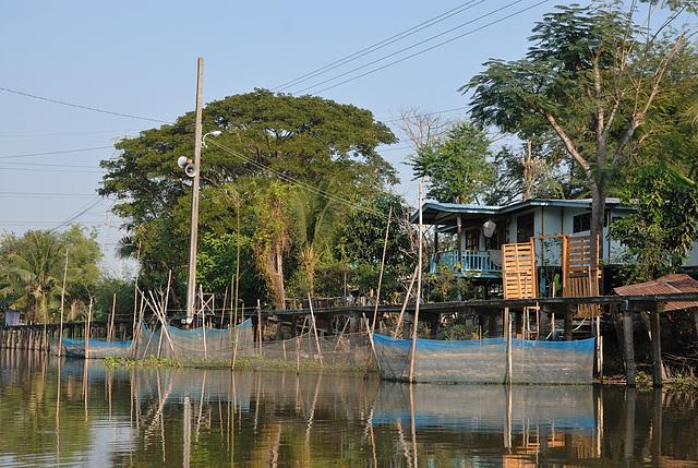 Resident housings beside the footbridge