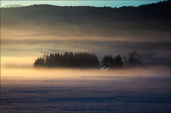 soft_morning_fog