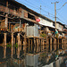 Nong Chok village