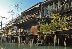 Nong Chok at Khlong Saen Saeb