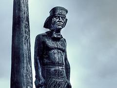 it's Mapuche's land......!