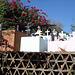 Puerto Angel, Oaxaca - Mexique - 15 janvier 2011