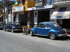 Pochutla, Oaxaca. Mexique / 19 janvier 2011.