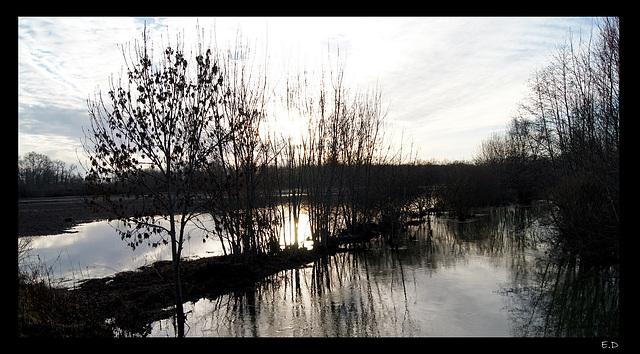 2011-01-09 Tours sur Marne