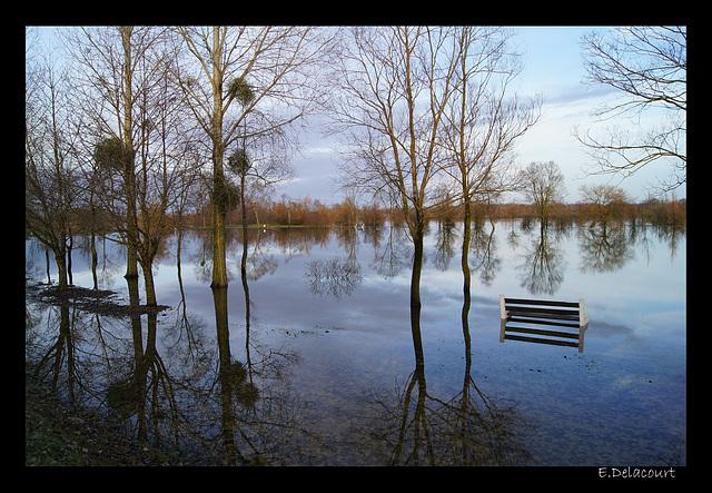 2011-01-09 Tours sur Marne1