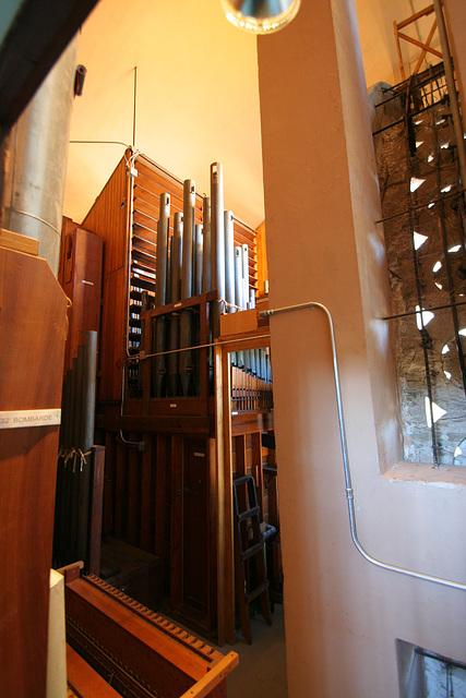 Spreckels Organ (8168)