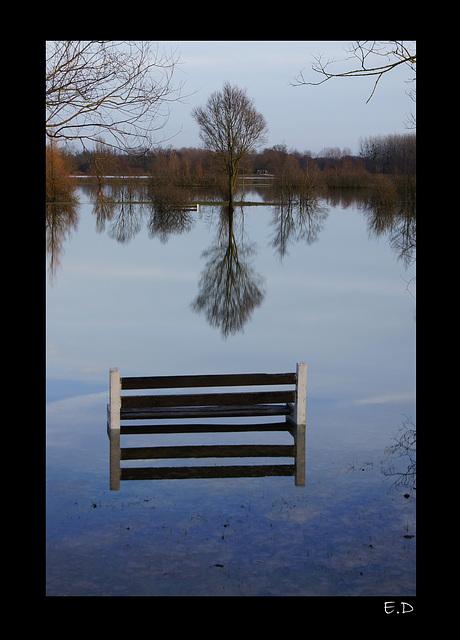 2011-01-09 Tours sur Marne3