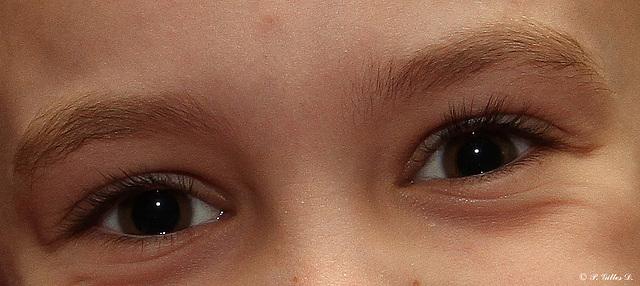 yeux de Florence