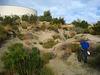Oasis Near MSWD Tanks (6054)
