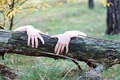 armswrap | myheart