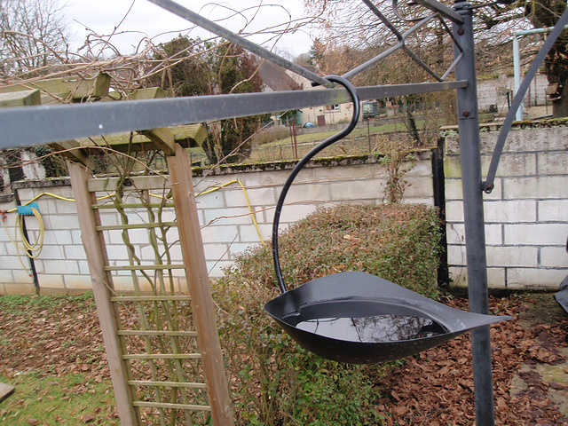 abreuvoir oiseaux P2050459