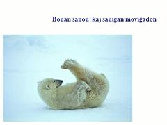 Blank-ursa bondeziro