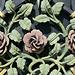 Detail Gartentür