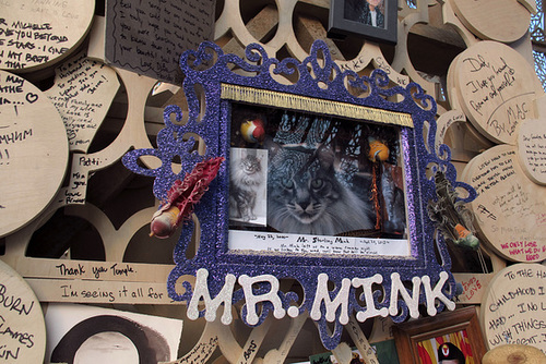 Temple Of Grace - Mr. Mink (0641)