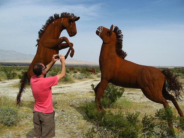 Galleta Meadows Estate - Horses (1698)