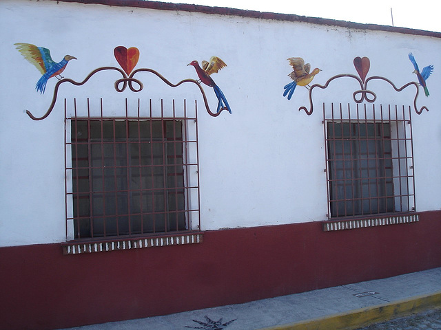 Tequila, Jalisco. Mexique /  22 mars 2011.