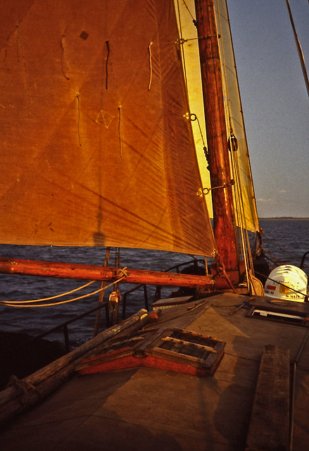 PICT1766 Sailing