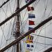 PICT0162 Flaggen dieser Welt