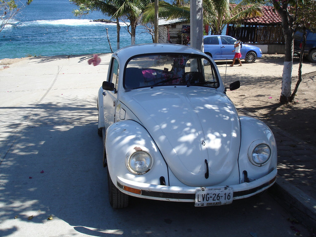 Playa Estacahuite / Puerto Angel, Oaxaca. Mexique / 16 janvier 2011.