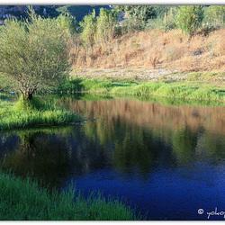 The river Cedrino