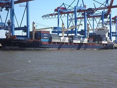 Feeder-Containerschiff FESCO VLADIMIR