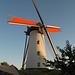 Windmühle Ramskapelle DSC06660
